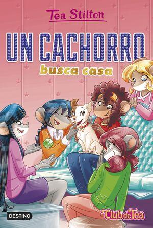 UN CACHORRO BUSCA CASA