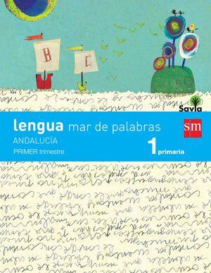 LENGUA: MAR DE PALABRAS. 1 PRIMARIA. SAVIA. ANDALUCÍA (LIBRO + CUADERNOS)