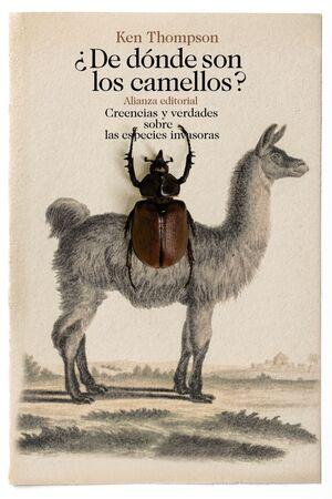 DE DÓNDE SON LOS CAMELLOS